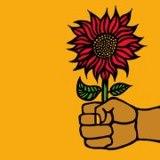 Die Welt pflanzt Sonnenblumen - International Sunflower Guerilla Gardening Day 2013