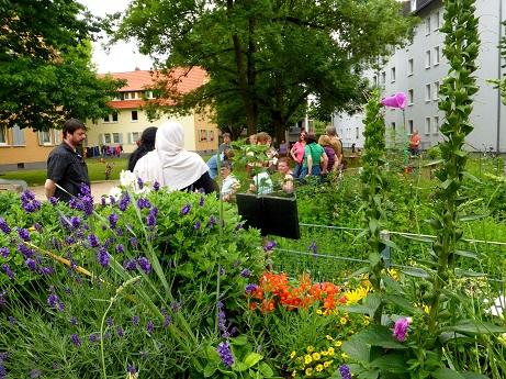Essbare Siedlung Hattersheim - Führung durch den Gemeinschaftsgarten