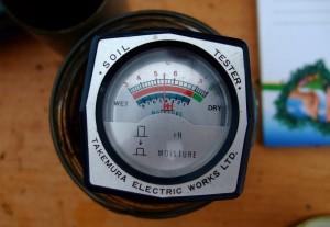 Messung des pH-Werts in unserer Bodenprobe- der sollte für Gemüse idealerweise zwischen 6 - 7 liegen.