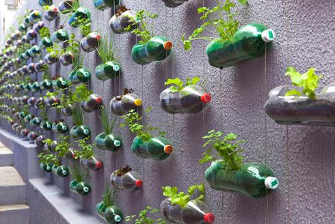 bottle-garden-11