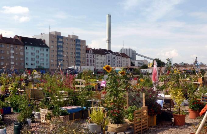 Bunte Gartenvielfalt im Offenbacher Wohn- und Industriegebiet