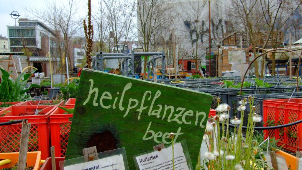 Urban Gardening Berlin: Prinzessinnengarten