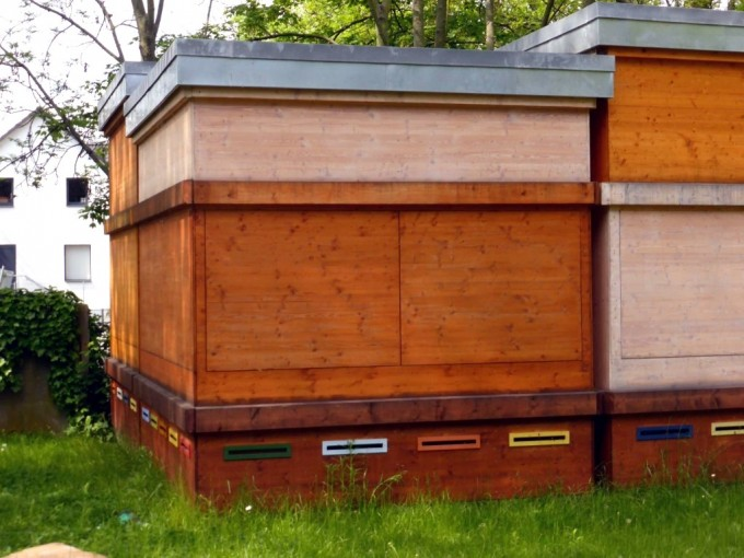 Transition Town Frankfurt unterstützt ein Bienenprojekt