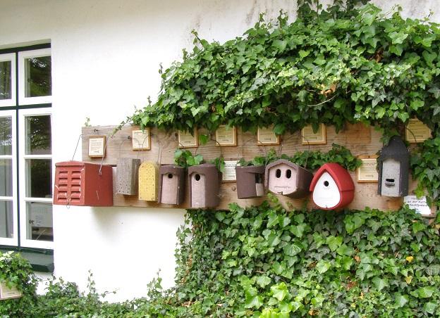 Nistkästen werden im Winter gerne als Quartier von Singvögeln angenommen