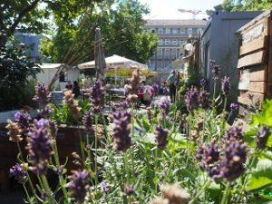 Gemeinschaftsgärten stellen sich vor @ Volkshochschule Frankfurt | Frankfurt am Main | Hessen | Deutschland