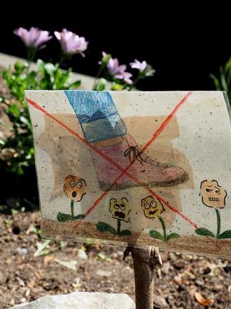 Schilder weisen auf die frisch bepflanzten Baumscheiben hin.