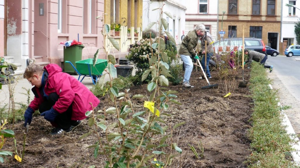 Urban Gardening Frankfurt: Lortzingstraße