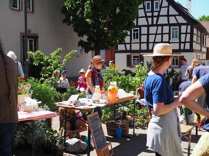 Urban Gardening Frankfurt: Ginnheimer Kirchplatzgärtchen