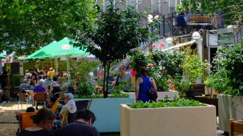Urban Gardening Frankfurt: Neuer Frankfurter Garten