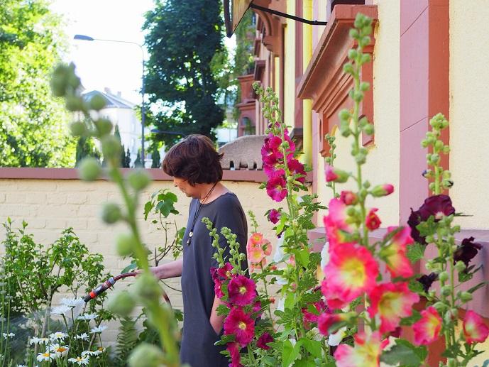 Blühender Vorgarten Frankfurt