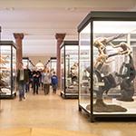 Kochen fürs Klima @ Senckenberg Naturmuseum | Frankfurt am Main | Hessen | Deutschland