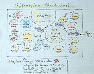 Pflanzplan für ein bienenfreundliches Staudenbeet