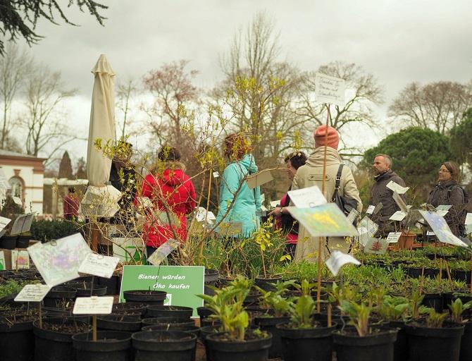 Stand mit Biostauden im Rahmen der Grünen Börse im Frankfurter Palmengarten