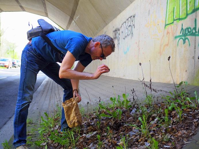 Unter einer offenen Stelle im Dach hat sich mitten in einer Unterführung Erde angesammelt. Im Hintergrund sind Beton und Graffitis zu sehen. Hier legen wir einige Samenbomben ab.