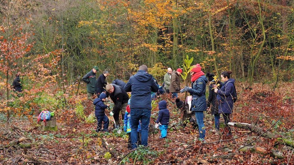 Frankfurter Bürger pflanzen Bäume im Stadtwald