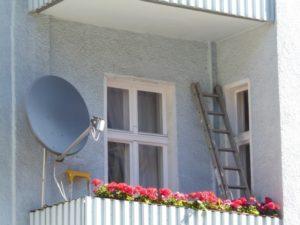 6. Bio-Balkon Kongress für artenreiche Wohlfühlbalkone @ Online